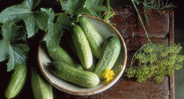 half-sour-pickle