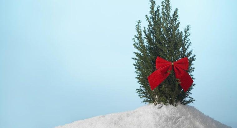 hang-christmas-tree-ribbon