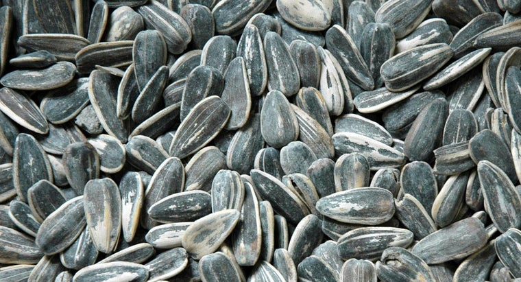 happens-eat-sunflower-seed-shells