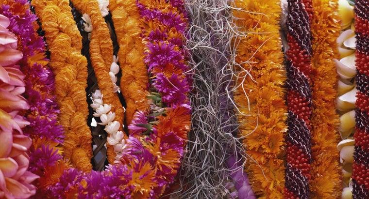 hawaiian-flower-necklace-called