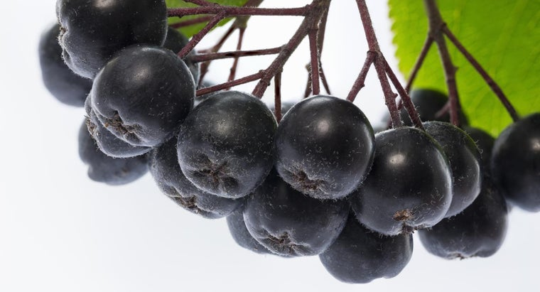 healthiest-fruit-world
