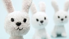 What Is the History of the Easter Bunny?