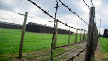 How Long Did the Holocaust Last?