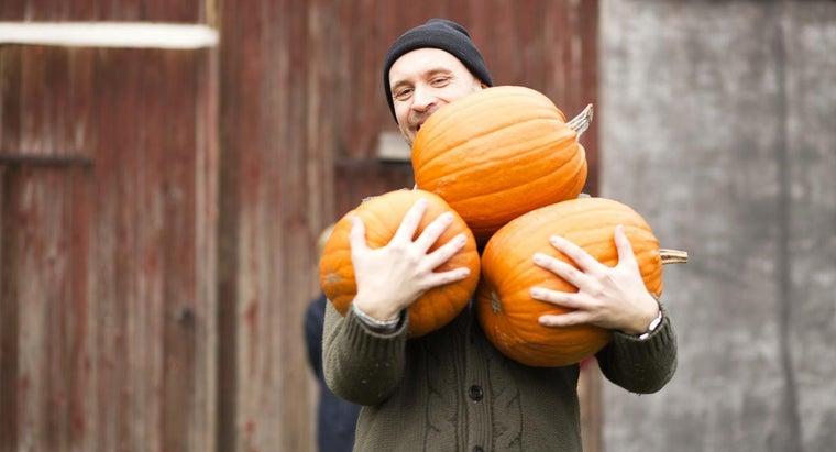 long-grow-pumpkins