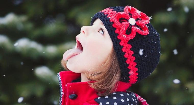 many-muscles-human-tongue