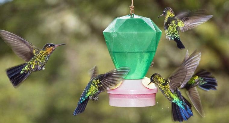 make-hummingbird-food