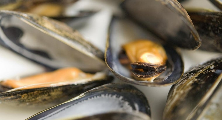 tell-mussels-bad