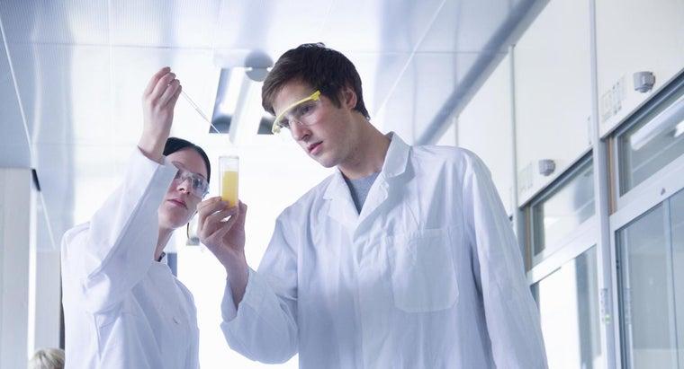 hydrogen-peroxide-react-yeast
