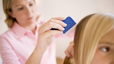 How Do You Identify Head Lice in Your Hair?
