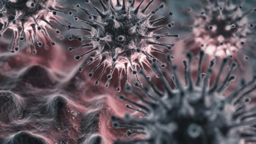What Is the Incubation Period for the Flu Virus?