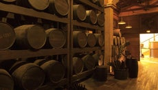 What Ingredients Go Into Making Rum?