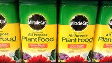 What Is Miracle-Grow Made Of?