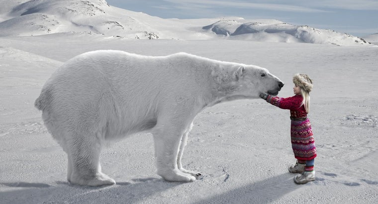 interesting-arctic-kids