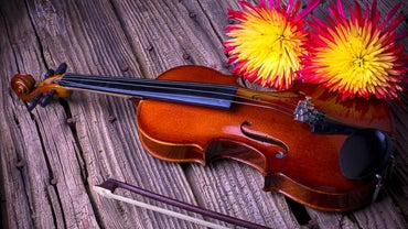 What Are Some Interesting Facts About the Violin?