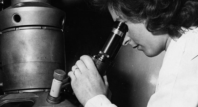 invented-electron-microscope
