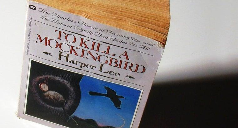 kill-mockingbird-mean