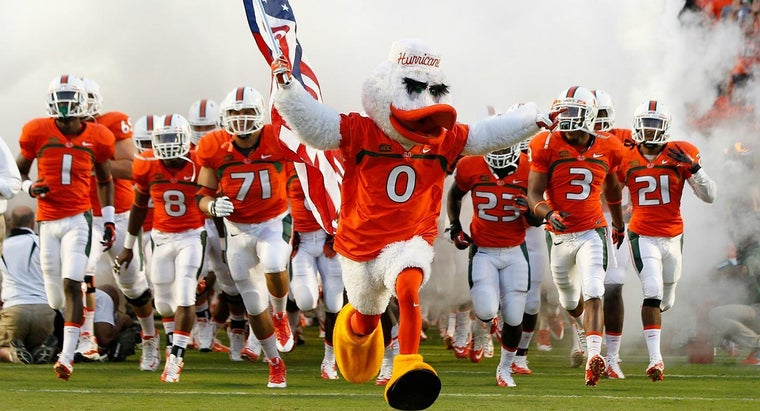 kind-bird-miami-hurricanes-mascot