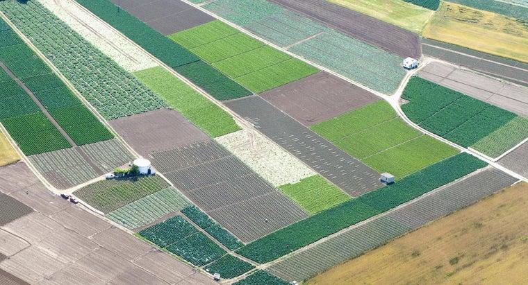 large-acre-land
