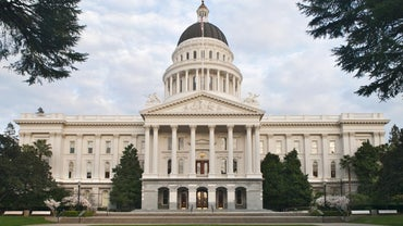 What Is the Legislative Branch on the Local Level?