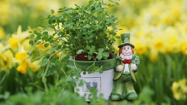 Do Leprechauns Bring Good Luck or Bad Luck?