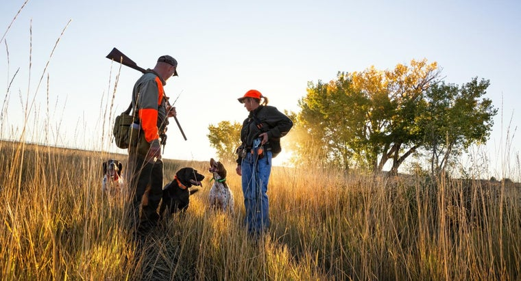 licenses-permits-can-wisconsin-dnr