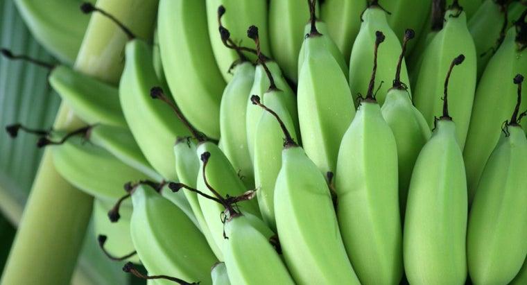 long-bananas-ripen