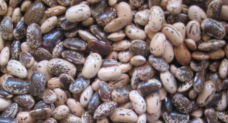 long-cook-pinto-beans-pressure-cooker