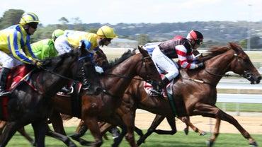 How Long Is a Furlong in Horse Racing?