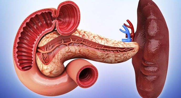 long-heal-ruptured-spleen