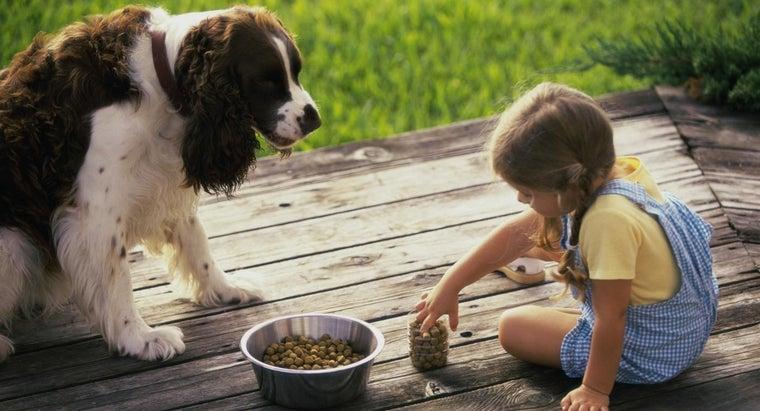 low-fat-dog-food