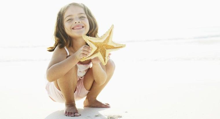 lower-surface-starfish-called