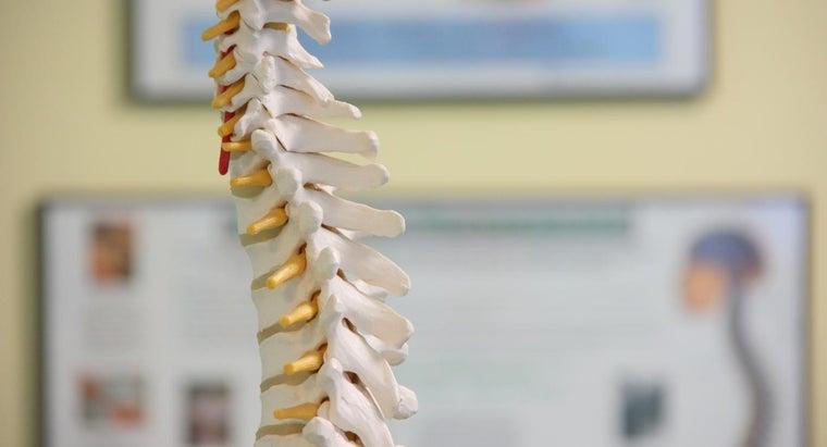 lumbar-spondylosis