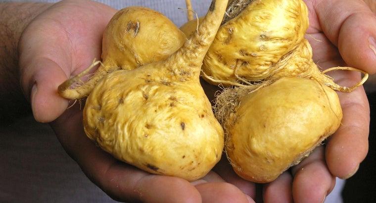 maca-root-used