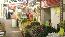 What Are Some of the Major Food Products of Mexico?