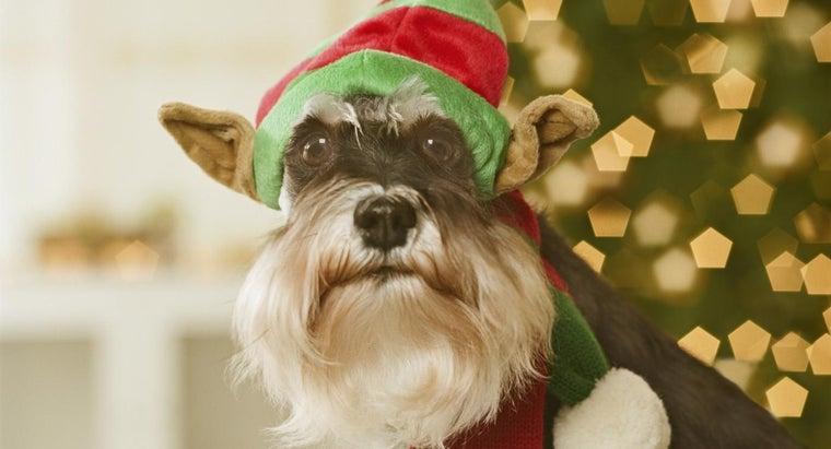 make-paper-elf-hat