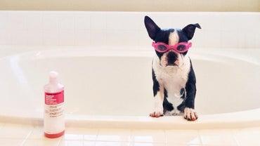 How Do You Make Puppy Shampoo at Home?