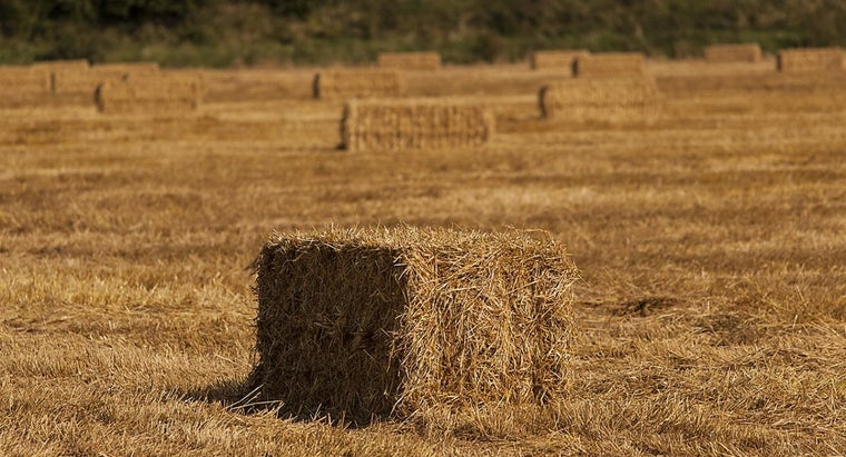 many-bales-hay-acre
