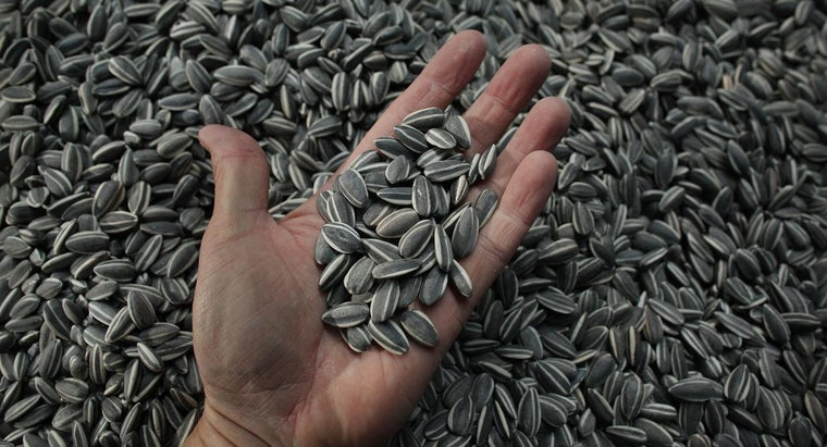 many-calories-sunflower-seeds