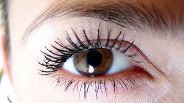 How Many Eyelashes Are on the Average Human Eye?