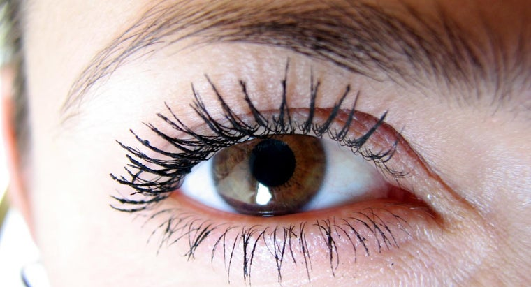 many-eyelashes-average-human-eye