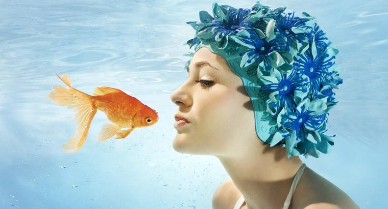 many-fish-years-equal-one-human-year