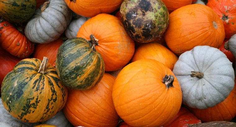 many-kinds-pumpkins