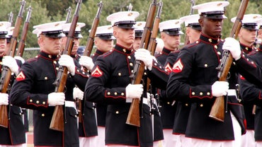 How Many Marines Die Each Year?