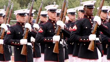 How Many Marines Die Each Year?