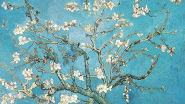 How Many Paintings Did Van Gogh Sell During His Lifetime?