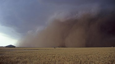 How Many People Died in the Dust Bowl?