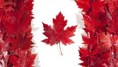 Why Is the Maple Leaf Important to Canada?