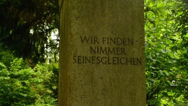 What Is Max Weber's Contribution to Sociology?