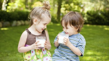 Is Milk a Pure Substance?