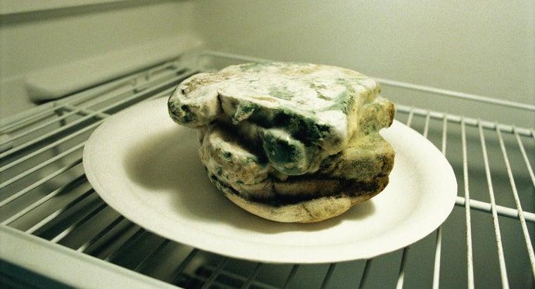 mold-grow-bread